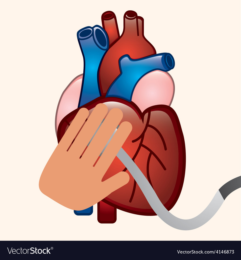 Cardiology vector | Price: 1 Credit (USD $1)