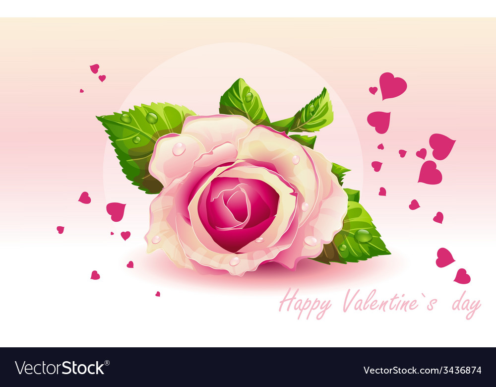 Card for valentines day pink rose vector | Price: 3 Credit (USD $3)