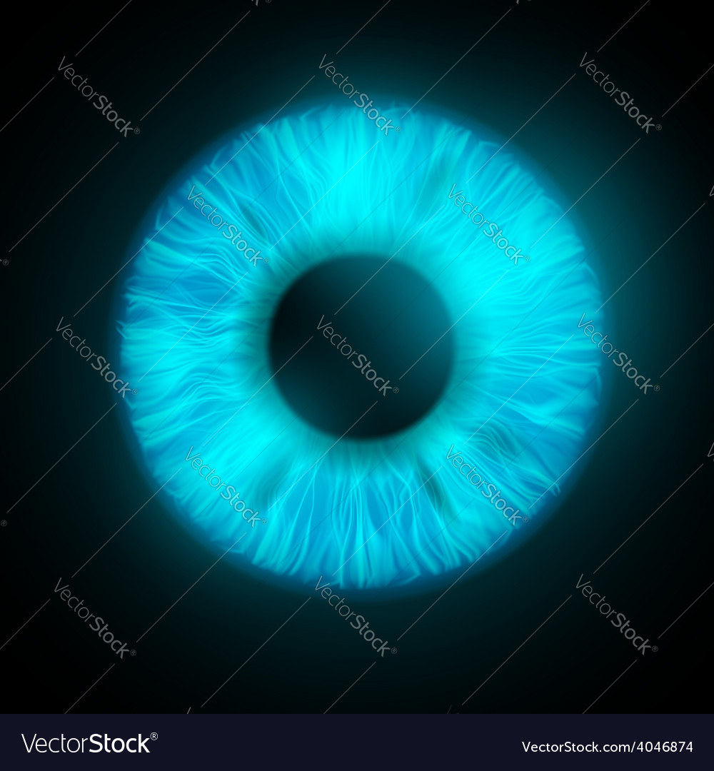 Iris of the human eye vector | Price: 1 Credit (USD $1)
