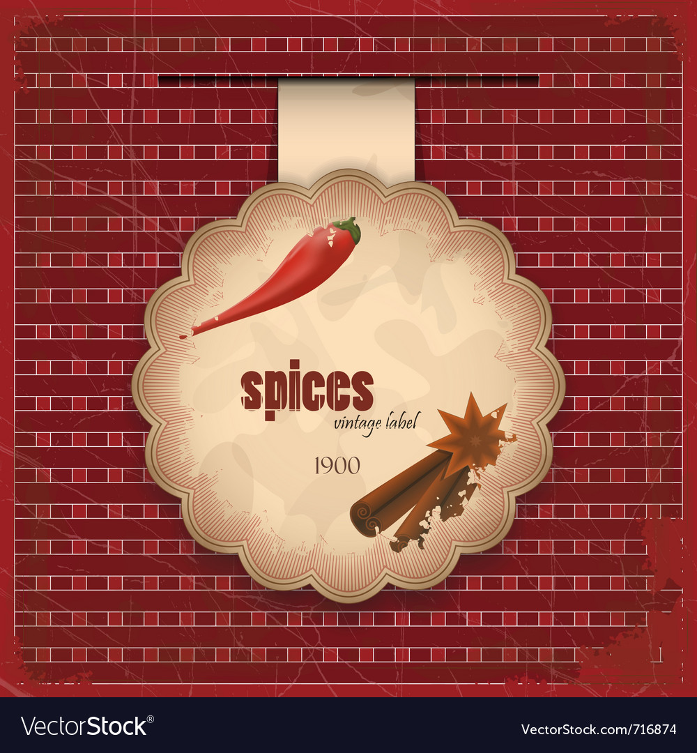 Vintage spice menu card - label with cinnamon anis vector | Price: 1 Credit (USD $1)