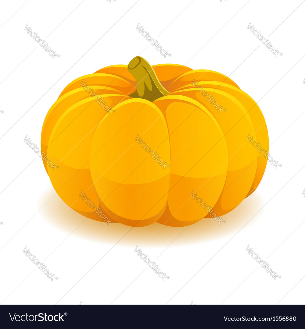 Pumpkin isolated on white background vector   Price: 1 Credit (USD $1)