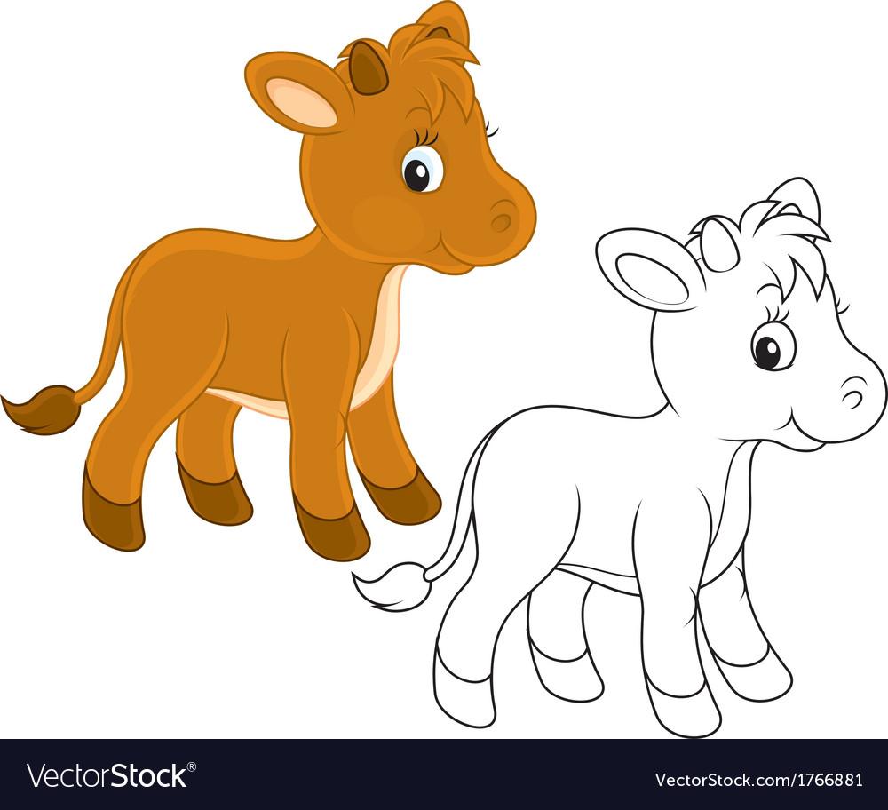 Calf vector | Price: 1 Credit (USD $1)