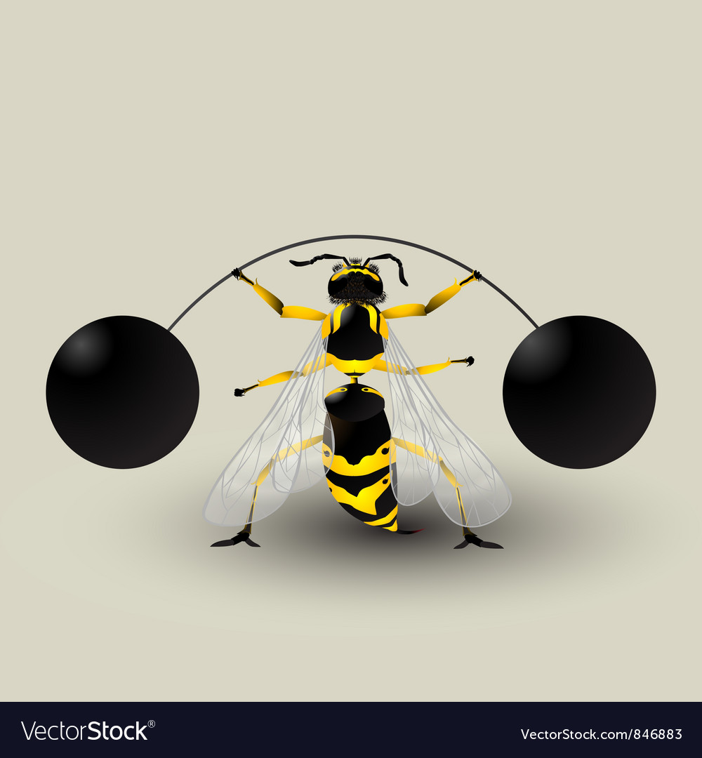 Loosing weight bee vector | Price: 1 Credit (USD $1)