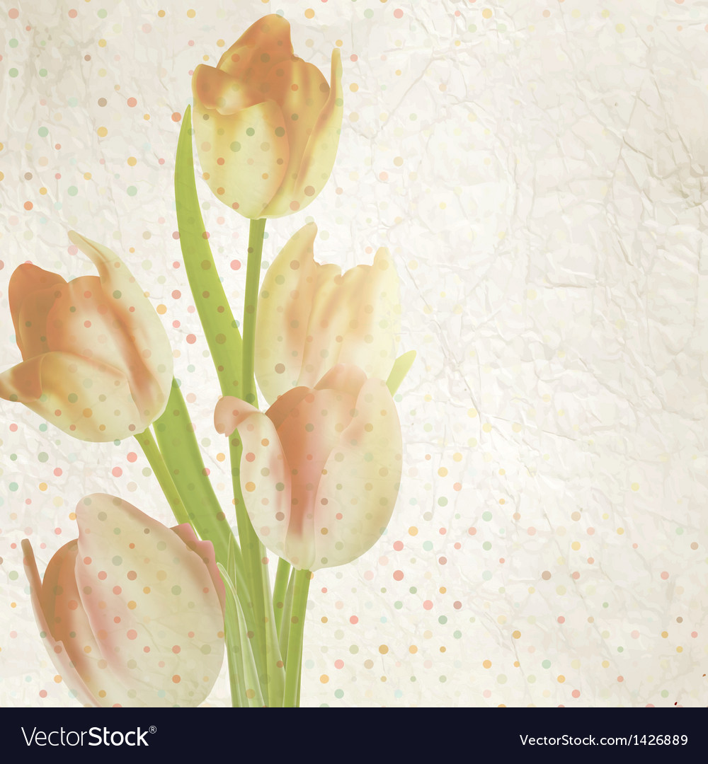 Vintage card with tulips and copyspace eps 10 vector | Price: 1 Credit (USD $1)