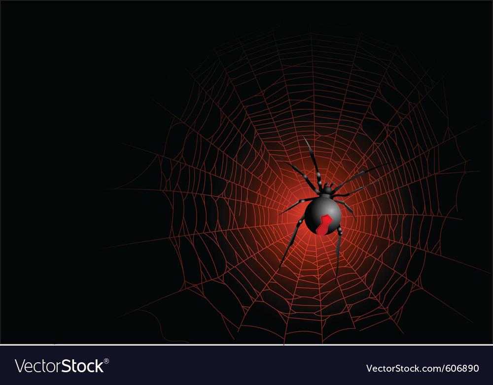 Halloween spider vector | Price: 1 Credit (USD $1)