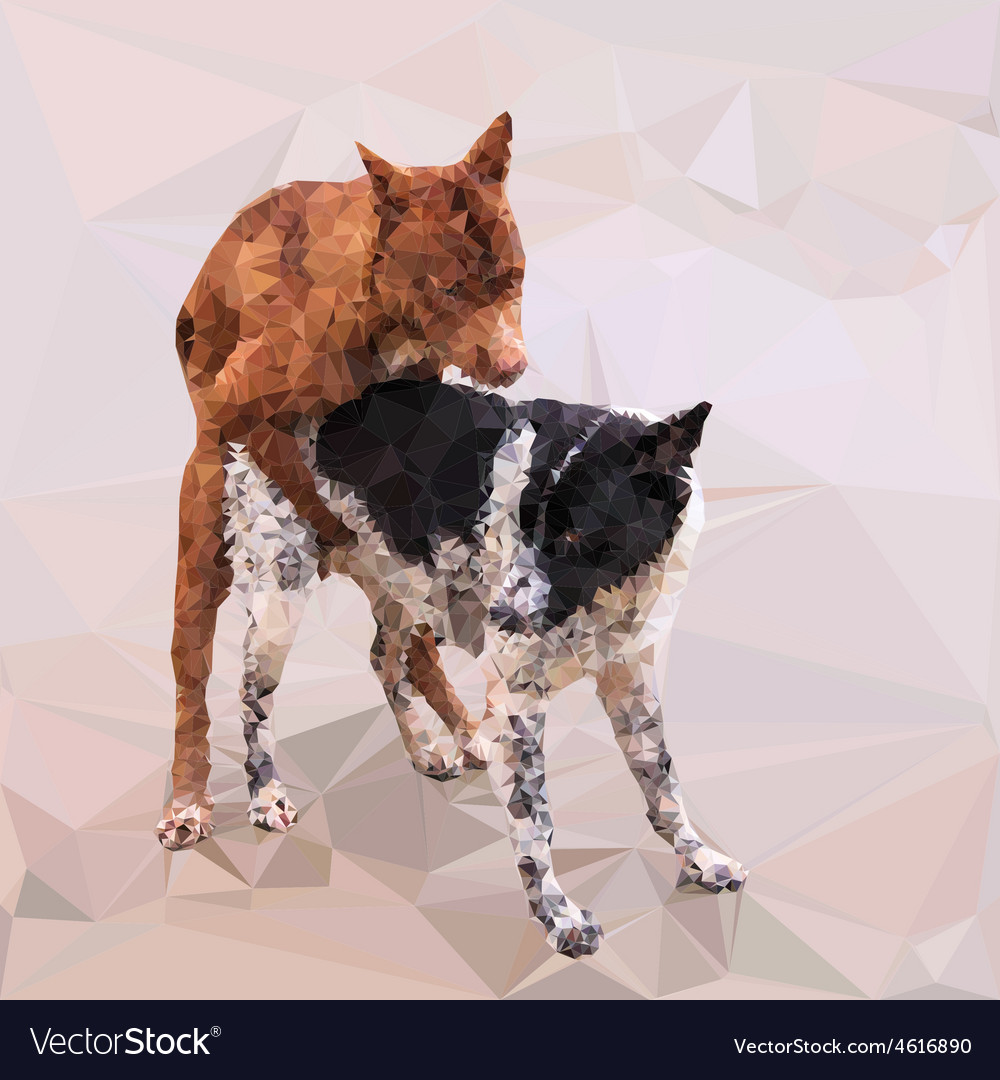 Low poly of male dog cover female dog vector