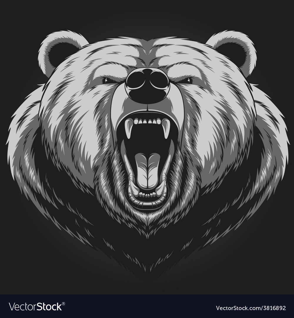 Angry bear head mascot vector | Price: 3 Credit (USD $3)