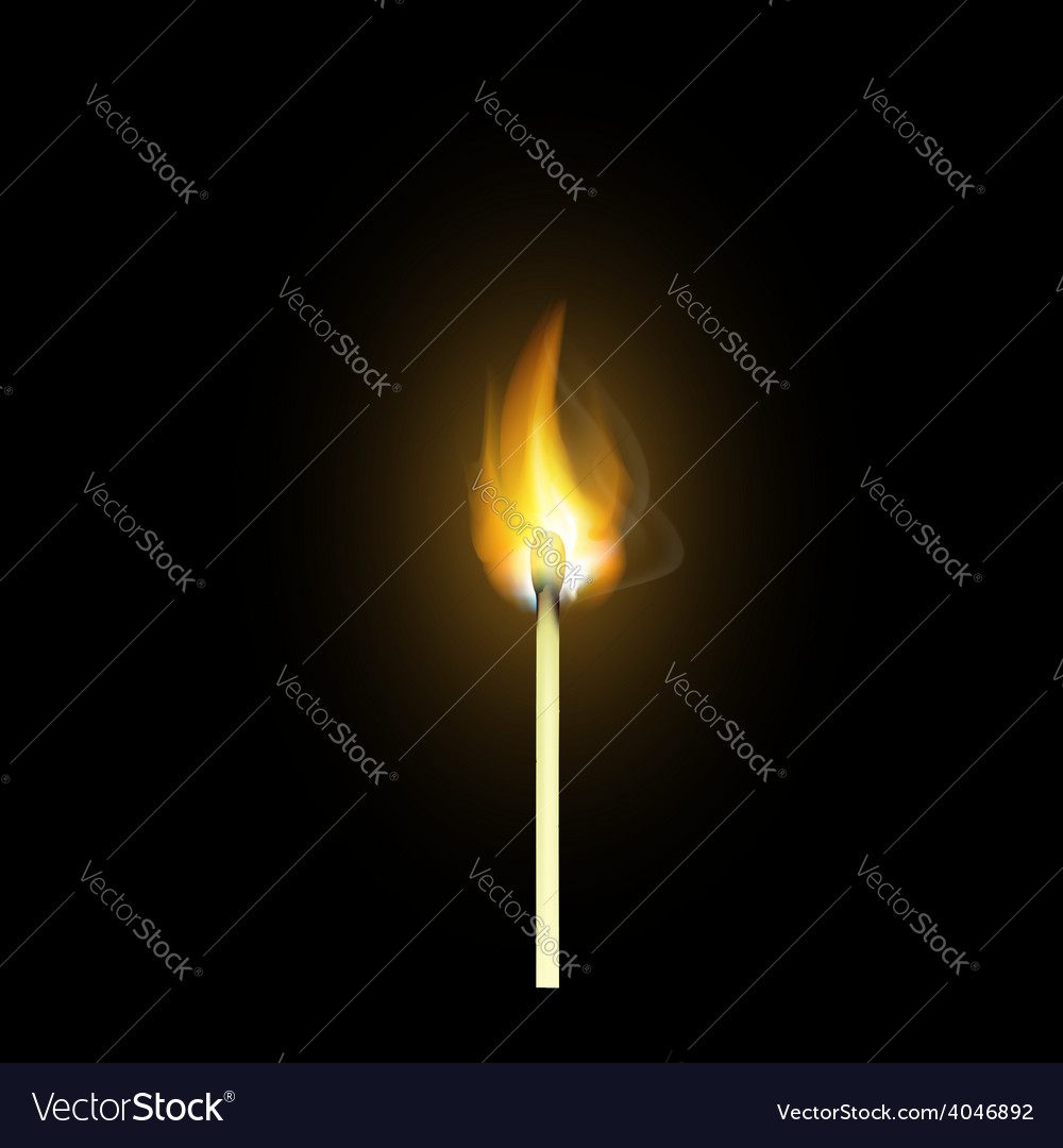Realistic burning match vector | Price: 1 Credit (USD $1)