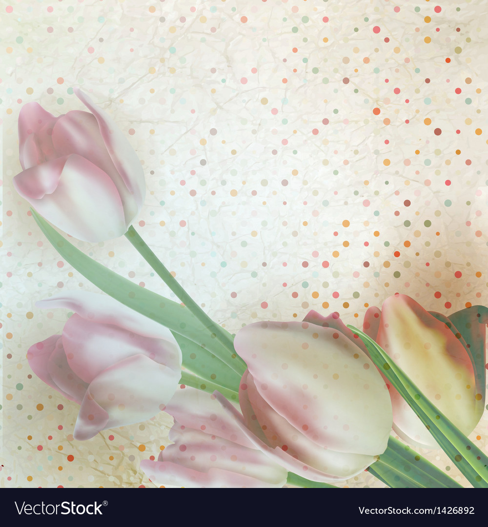 Vintage text frame with tulips old paper eps 10 vector | Price: 1 Credit (USD $1)