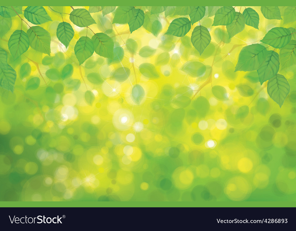 Spring forest vector | Price: 3 Credit (USD $3)