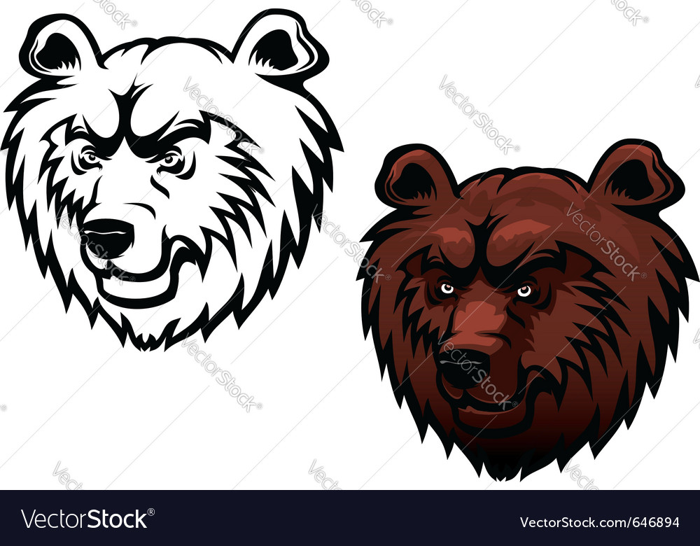 Wild kodiak bear vector | Price: 3 Credit (USD $3)