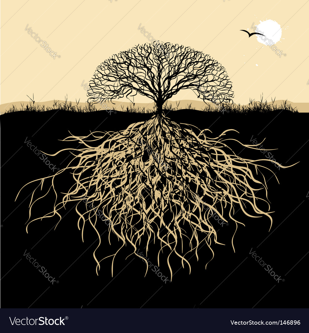 Tree silhouette with roots vector | Price: 1 Credit (USD $1)