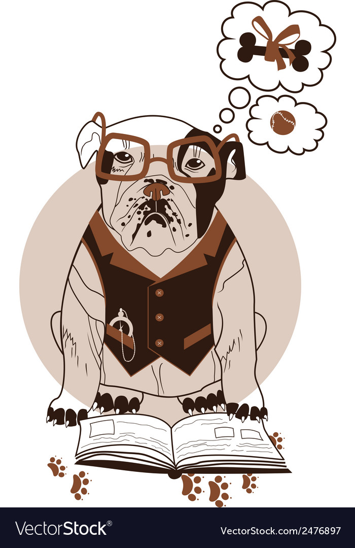 Smart bulldog vector | Price: 1 Credit (USD $1)