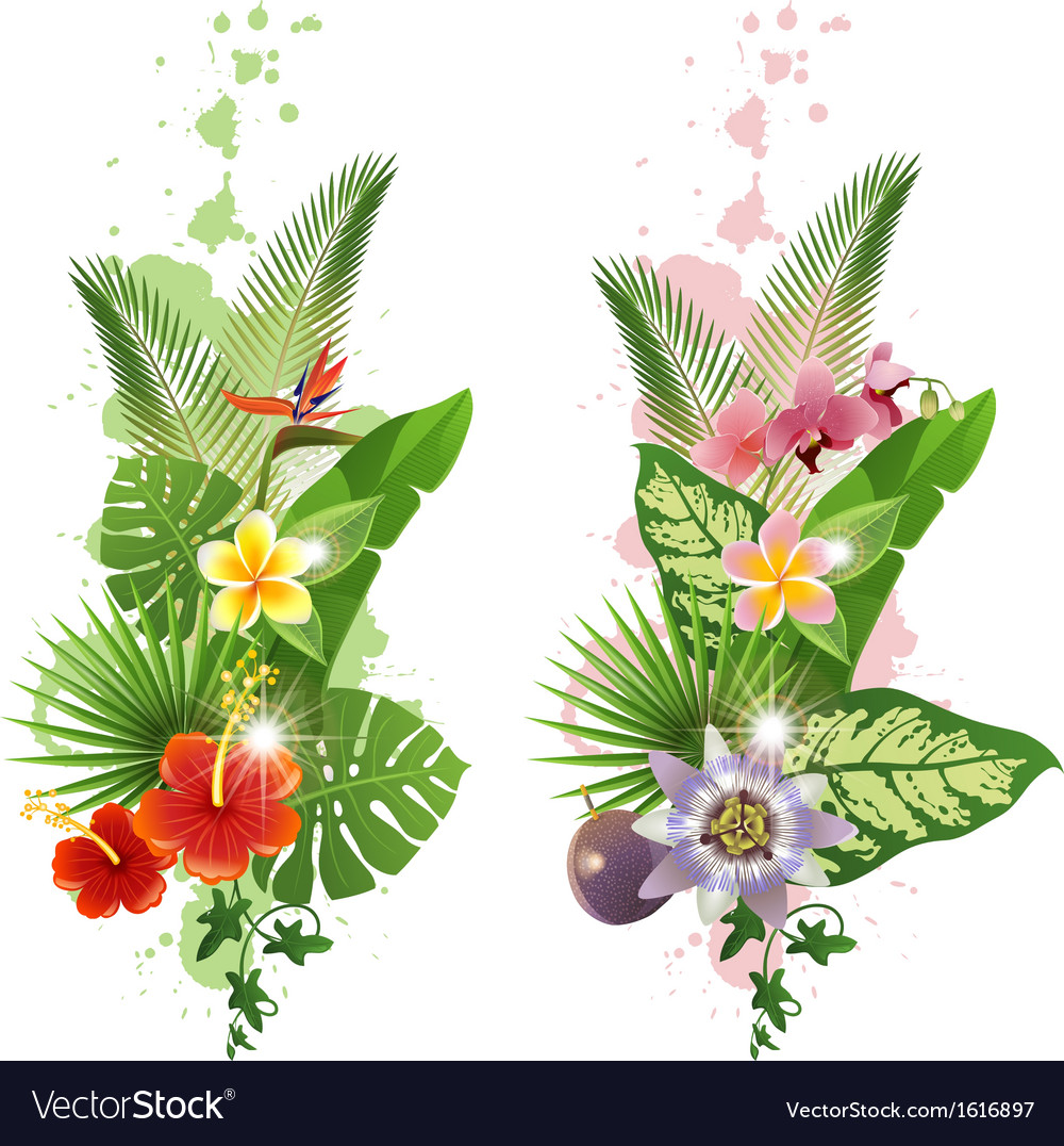 Vertical tropical banners vector | Price: 1 Credit (USD $1)