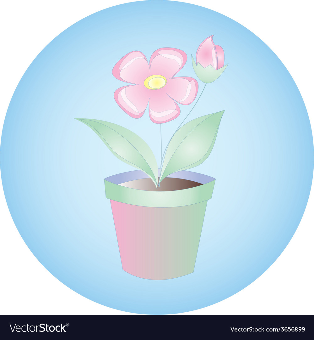 Plant flowers in pot on blue background vector | Price: 1 Credit (USD $1)