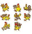 Chicken poses vector