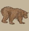Bear sketch vector