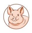 Farm pig vector
