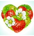 Strawberries in the shape of heart vector