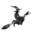 Witch and broom vector