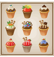 Set of cupcakes vector