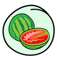 Fresh green watermelons on round green background vector
