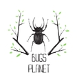 Big black beetle insect and nature symbol vector