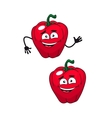 Two happy smiling red bell peppers vector