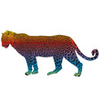Leopard - abstract rainbow vector