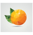 Geometric polygonal fruit triangles orange vector