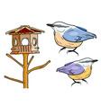 Cartoon birds with bird box vector