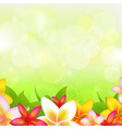 Natural background with garland from plumeria vector
