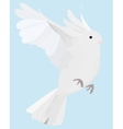 Dove on fly vector