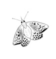 Black silhouette of simple butterfly vector