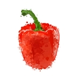 Red sweet pepper isolated on white vector