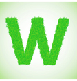 Grass letter w vector
