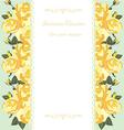 Yellow rose border floral card vector