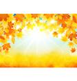 Sunny autumn day vector