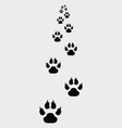 Footprints of dogs vector