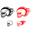 Danger skulls with flames vector