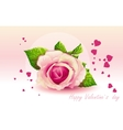 Card for valentines day pink rose vector