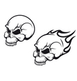 Skulls tattoo vector