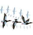 Wild geese in flight vector