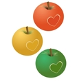 Apples with a heart vector