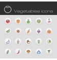 Icons set vegetables vector