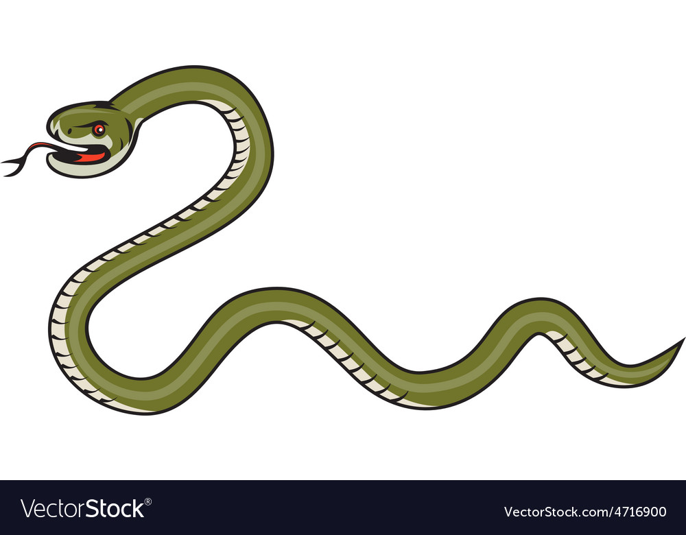 Serpent coiling side isolated cartoon vector | Price: 1 Credit (USD $1)