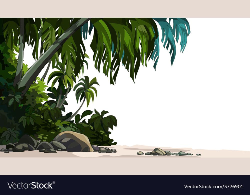 Jungle plants vector | Price: 3 Credit (USD $3)
