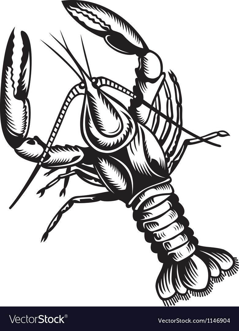 Crayfish vector | Price: 1 Credit (USD $1)