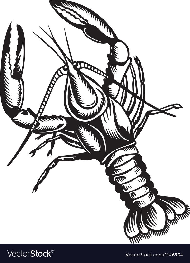 Crayfish vector | Price: 1 Credit (USD $1)