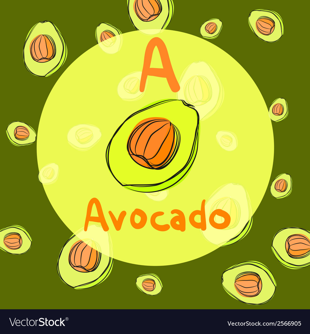 Avocado sketch background for recipe vector | Price: 1 Credit (USD $1)